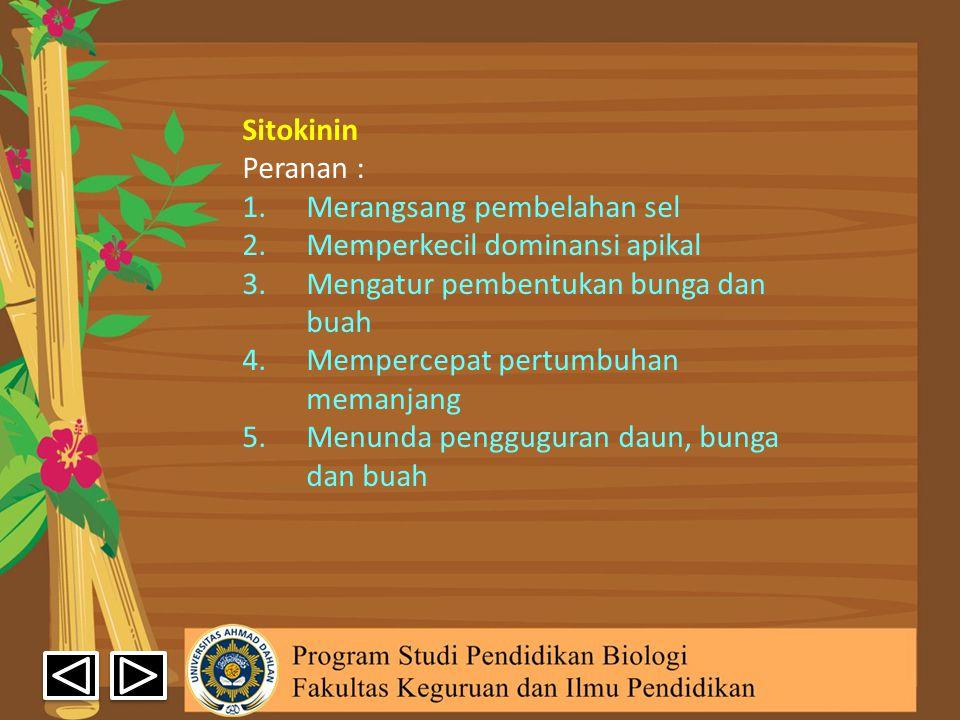 Sitokinin Peranan : 1.Merangsang pembelahan sel 2.Memperkecil dominansi apikal 3.Mengatur pembentukan bunga dan buah 4.Mempercepat pertumbuhan memanja
