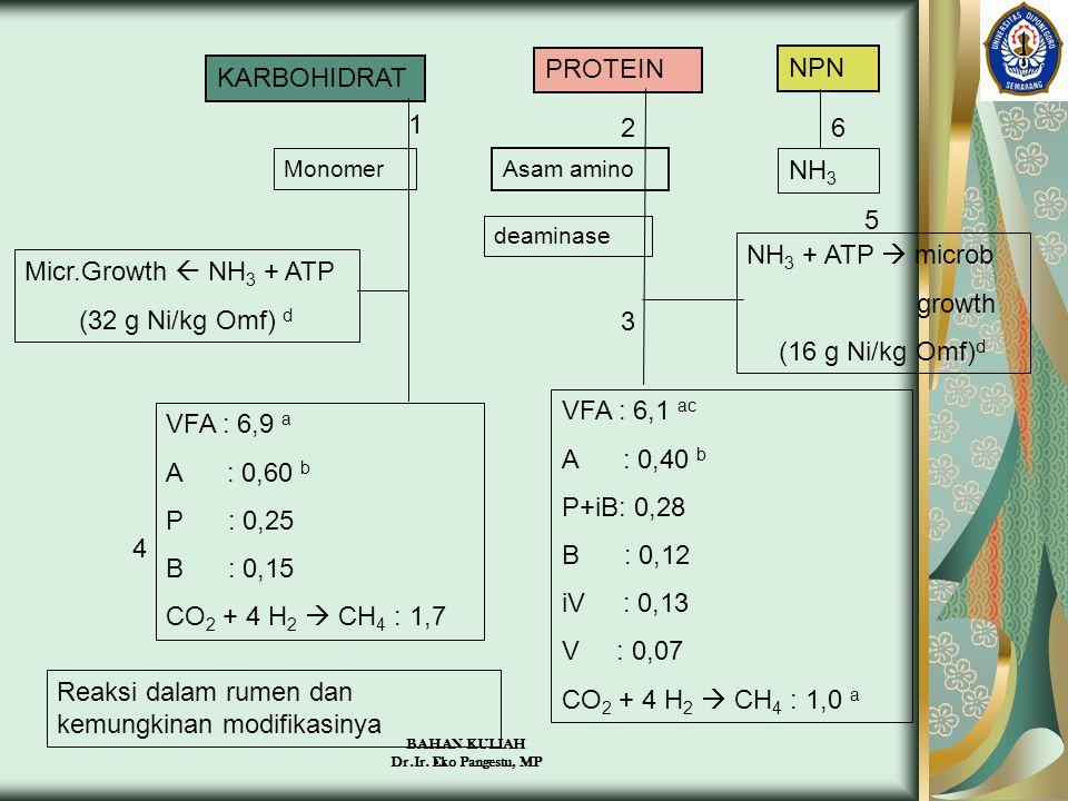 BAHAN KULIAH Dr.Ir. Eko Pangestu, MP KARBOHIDRAT PROTEIN NPN Monomer Asam amino deaminase NH 3 Micr.Growth  NH 3 + ATP (32 g Ni/kg Omf) d NH 3 + ATP