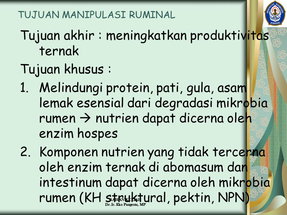 BAHAN KULIAH Dr.Ir. Eko Pangestu, MP TUJUAN MANIPULASI RUMINAL Tujuan akhir : meningkatkan produktivitas ternak Tujuan khusus : 1.Melindungi protein,