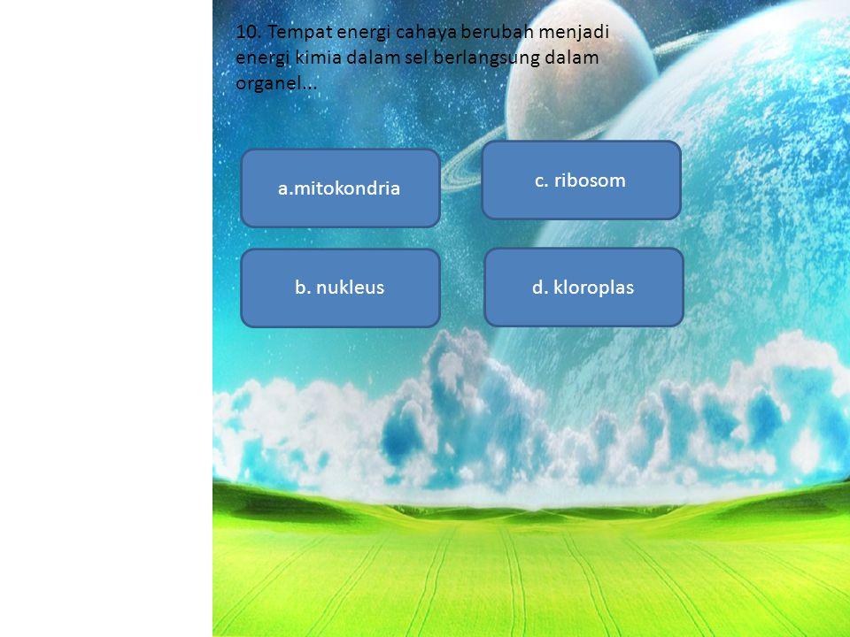 a.mitokondria d. kloroplas c. ribosom b. nukleus 10. Tempat energi cahaya berubah menjadi energi kimia dalam sel berlangsung dalam organel...