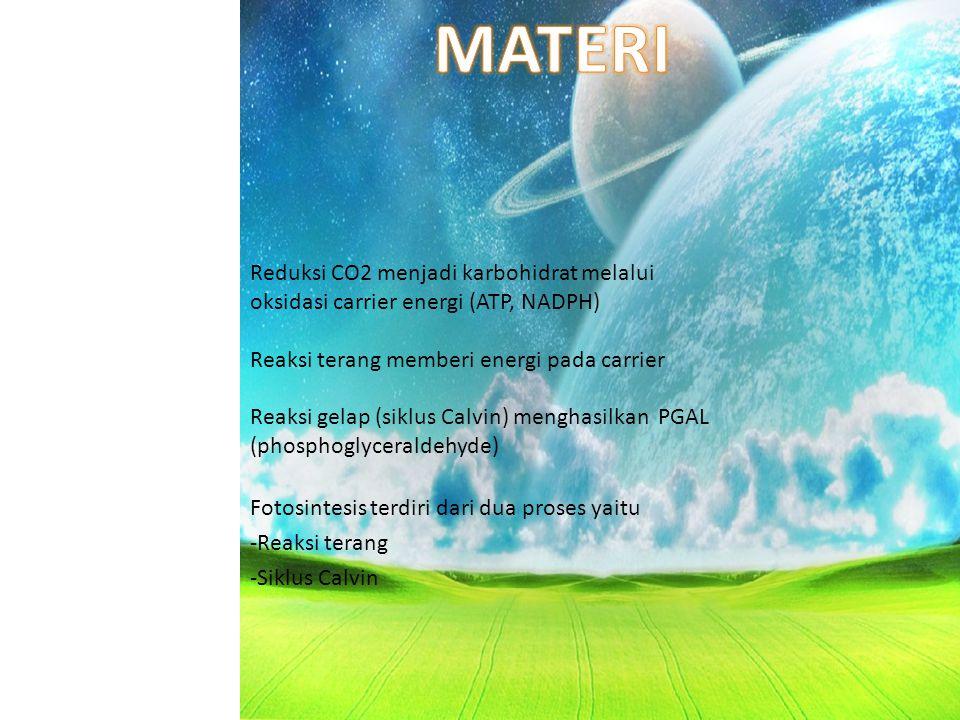 a.air b.oksigen c. karbon dioksida d. sinar matahari 7.