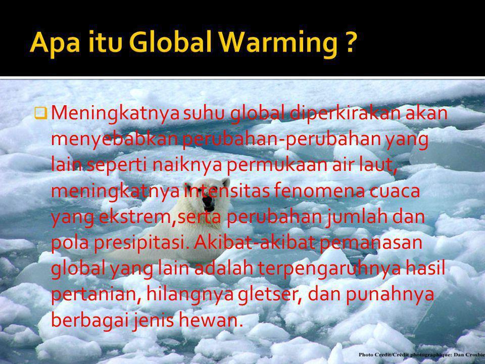  Meningkatnya suhu global diperkirakan akan menyebabkan perubahan-perubahan yang lain seperti naiknya permukaan air laut, meningkatnya intensitas fen