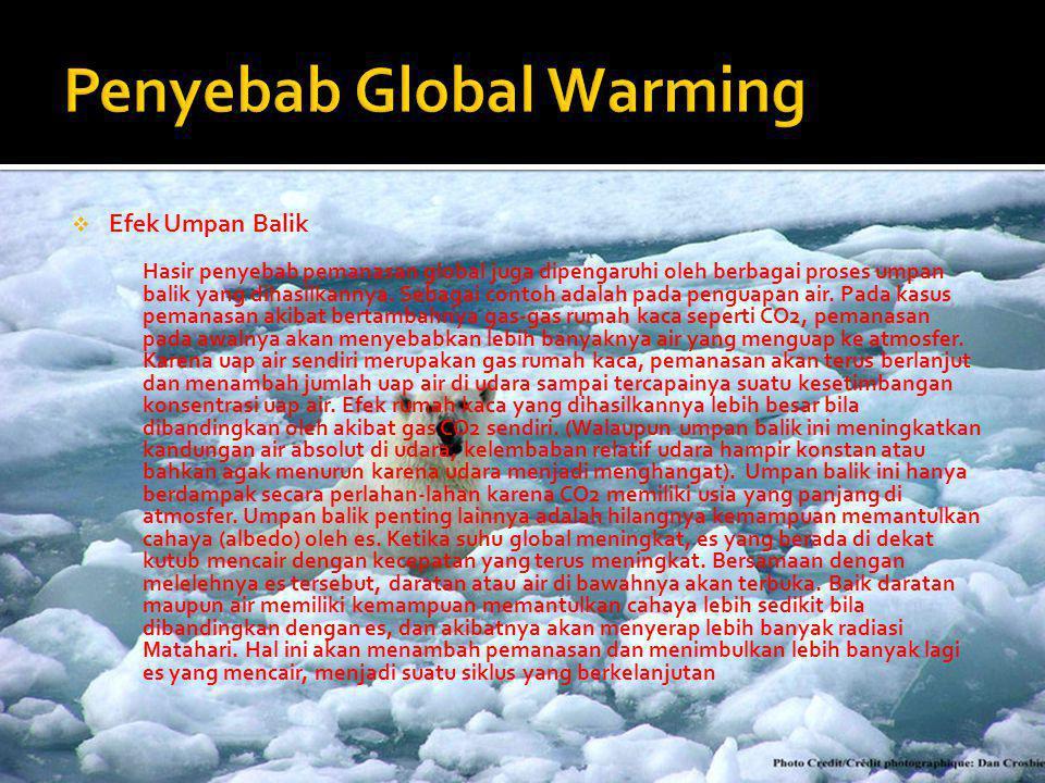  Efek Umpan Balik Hasir penyebab pemanasan global juga dipengaruhi oleh berbagai proses umpan balik yang dihasilkannya. Sebagai contoh adalah pada pe