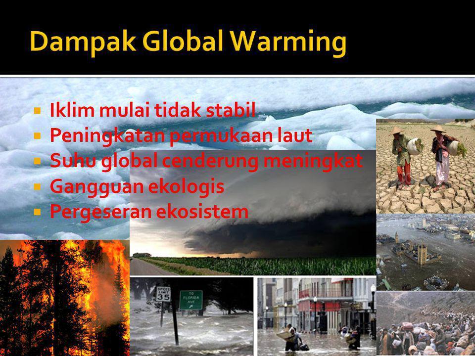  Iklim mulai tidak stabil  Peningkatan permukaan laut  Suhu global cenderung meningkat  Gangguan ekologis  Pergeseran ekosistem