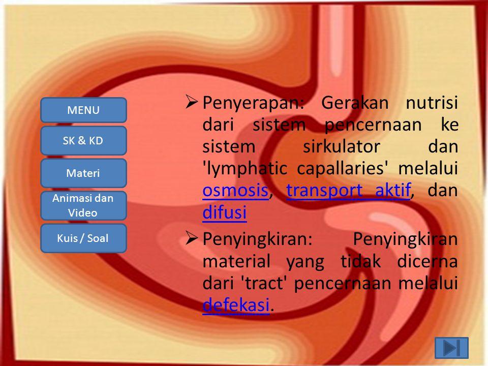 SK & KD Materi Animasi dan Video Kuis / Soal MENU Sistem pencernaan makanan pada manusia terdiri dari beberapa organ, berturut-turut dimulai dari : 1.