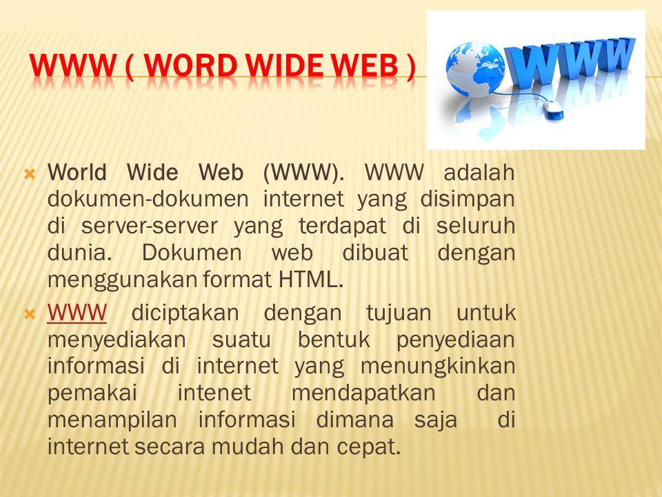 World Wide Web (WWW).