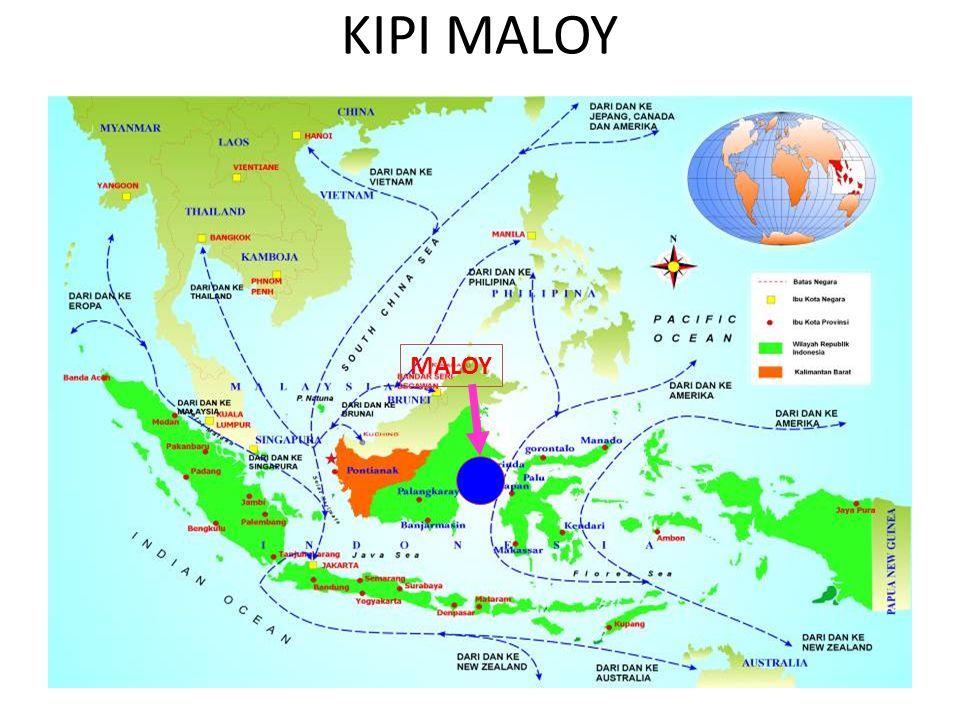 KIPI MALOY MALOY