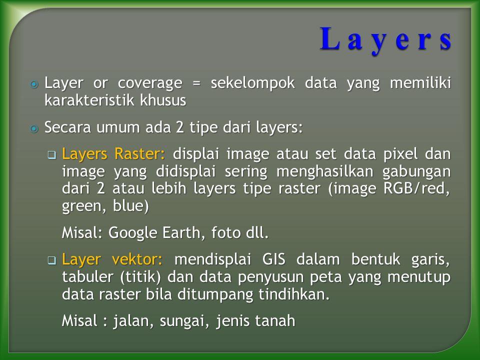  Layer or coverage = sekelompok data yang memiliki karakteristik khusus  Secara umum ada 2 tipe dari layers:  Layers Raster: displai image atau set