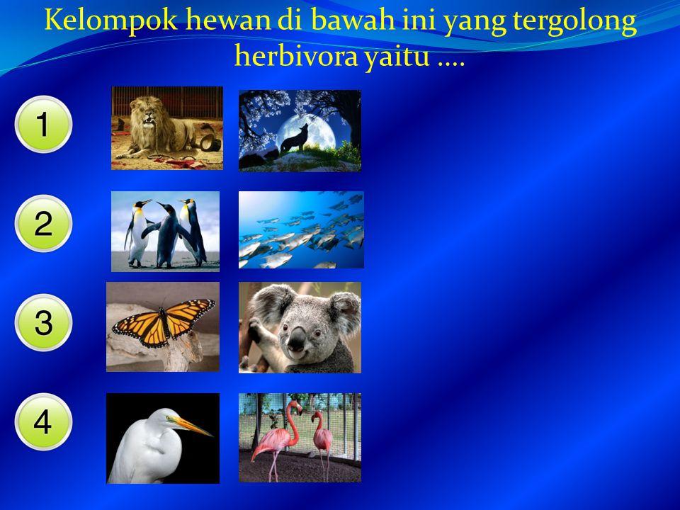 Di sawah ular itu memangsa katak, berarti ular termasuk …. Hewan melata herbivora omnivora karnivora