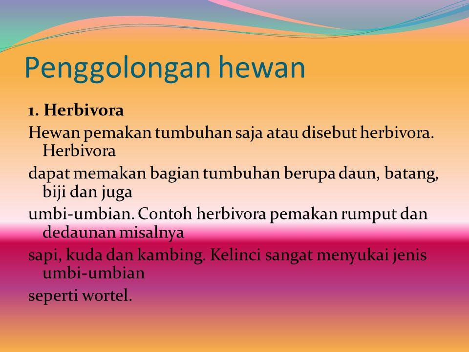 Penggolongan hewan 1.Herbivora Hewan pemakan tumbuhan saja atau disebut herbivora.