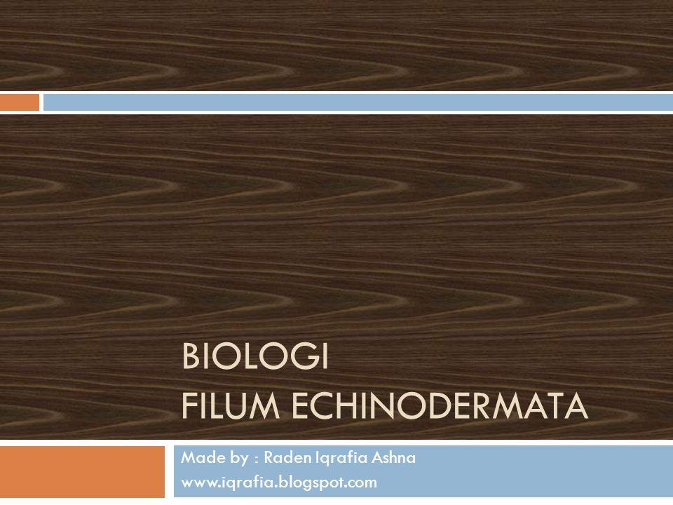 BIOLOGI FILUM ECHINODERMATA Made by : Raden Iqrafia Ashna www.iqrafia.blogspot.com