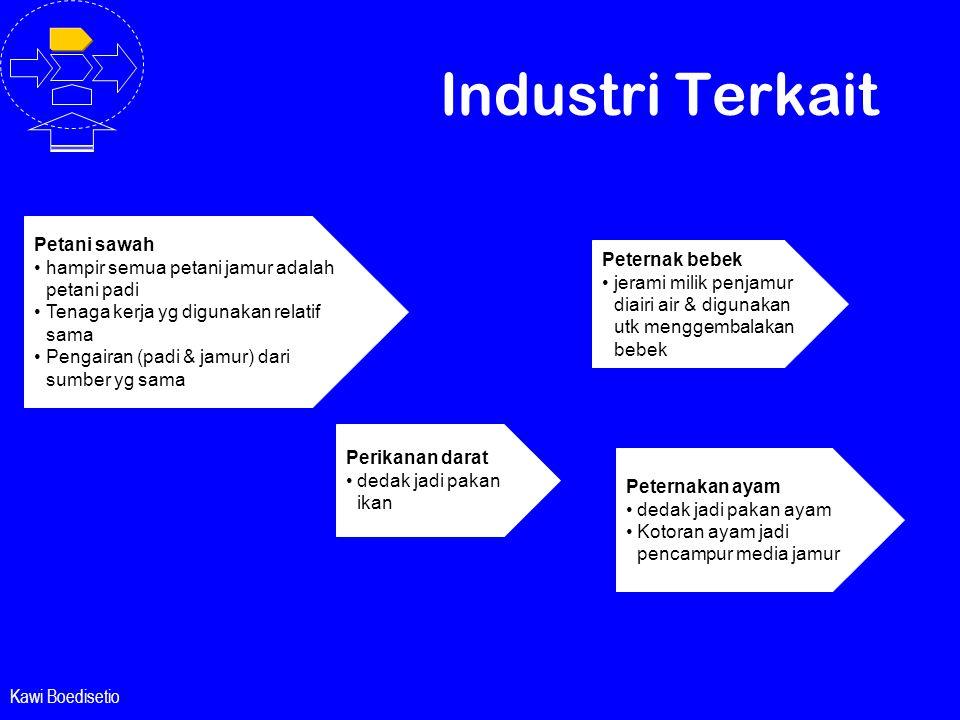 Kawi Boedisetio Industri Terkait Petani sawah •hampir semua petani jamur adalah petani padi •Tenaga kerja yg digunakan relatif sama •Pengairan (padi &