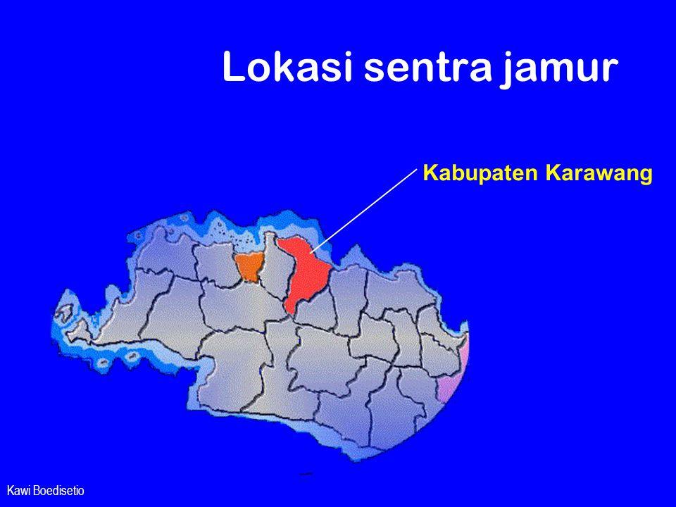 Kawi Boedisetio Lokasi sentra jamur Kabupaten Karawang