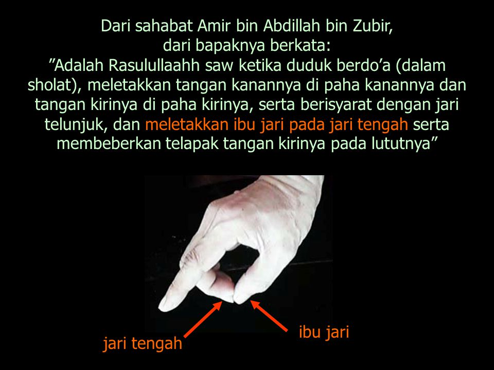 Dari ibnu Umar: Bahwa Rasulullaahh saw ketika duduk dalam syahadat, meletakkan tangan kirinya di atas lutut kirinya dan meletakkan tangan kanannya di atas lutut kanannya, dan mengikat lima puluh tiga (53), dan berisyarat dengan jari telunjuk .