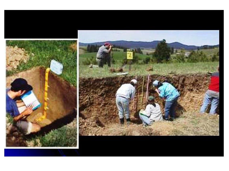 SURVEI TANAH dan PETA TANAH • Hasil Survei Tanah adalah PETA TANAH dan LAPORAN SURVEI • Pada tiap Peta Tanah disajikan hasil survei dalam bentuk yang mudah dipahami dan diperagakan.