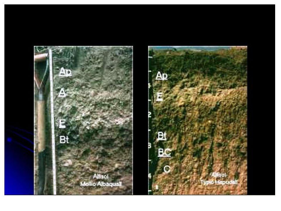 • Pelaksanaan survei tanah pada skala yang berbeda dilakukan dengan cara yang berbeda.