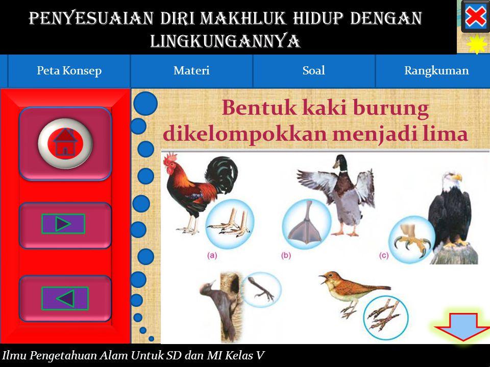 RangkumanPeta KonsepMateriSoalPeta KonsepMateriSoalRangkuman Penyesuaian Diri Makhluk Hidup dengan Lingkungannya Ilmu Pengetahuan Alam Untuk SD dan MI Kelas V Bentuk kaki burung dikelompokkan menjadi lima