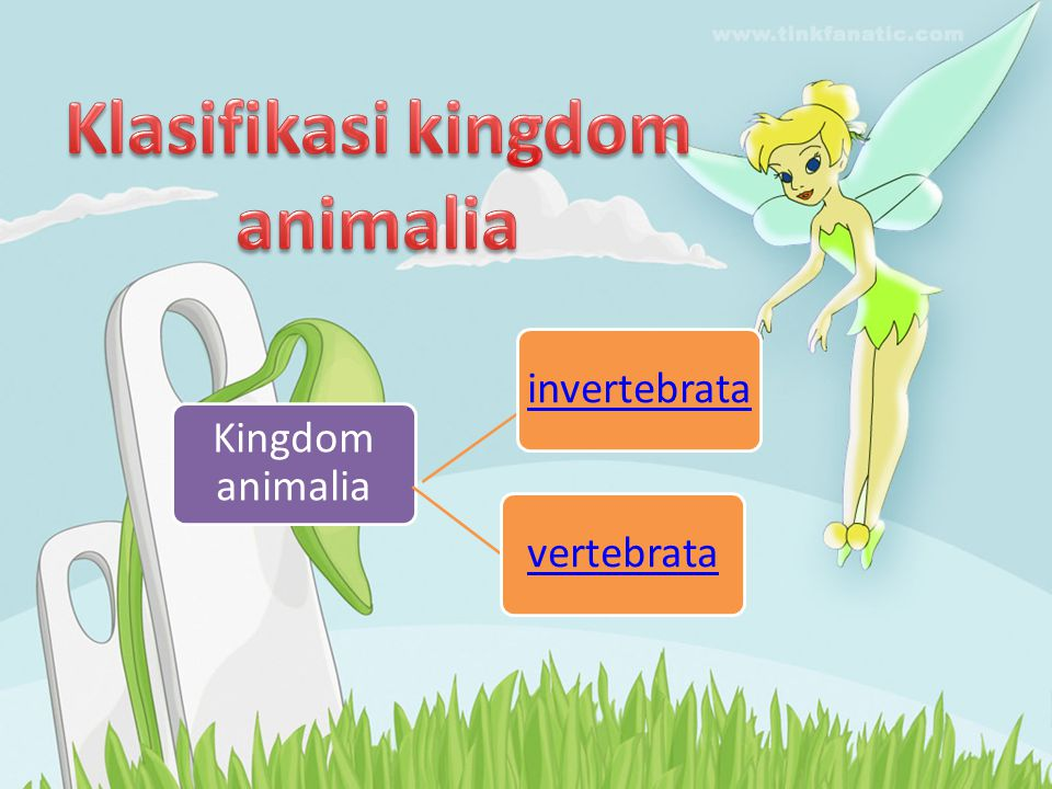 Penyokong Tubuh • Eksoskeleton – Rangka Luar (Arthropoda, Ikan, Ular, Kura-Kura, Penyu, dsb) • Endoskeleton – Rangka Dalam (Semua Vertebrata)