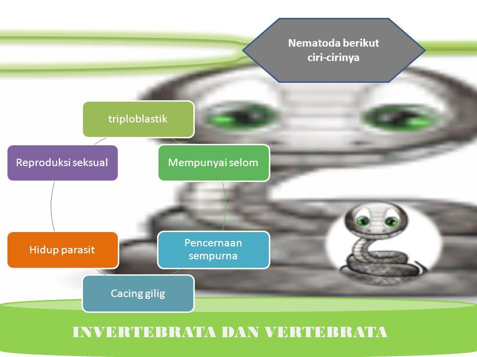 KINGDOM ANIMALIA Pada umumnya Platyhelminthes merugikan, sebab parasit pada manusia maupun hewan, kecuali Planaria. Planaria dapat juga dimanfaatkan u