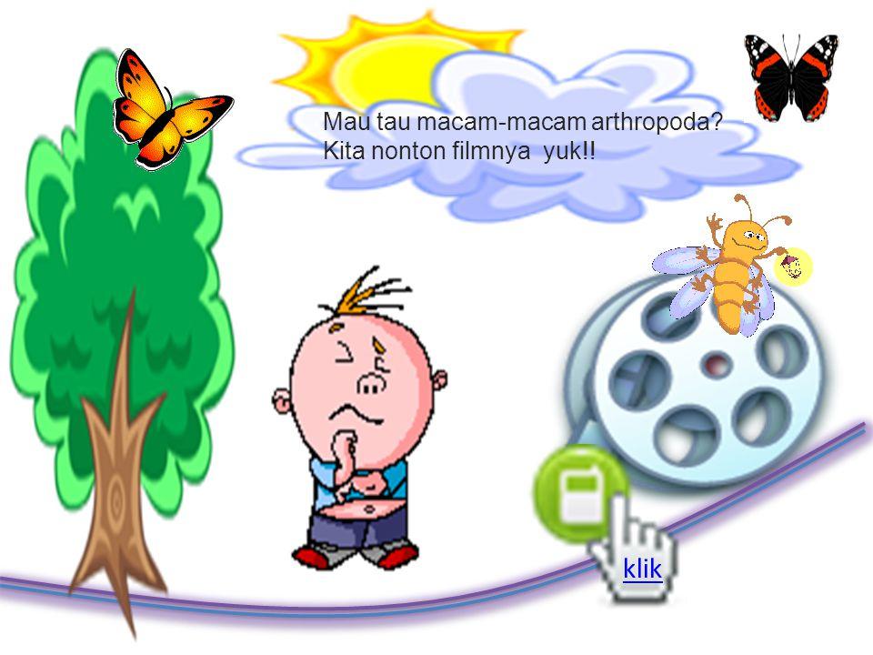 Klasifikasi Arthropoda Crustacea (golongan udang dan kepiting) Arachnida (golongan laba-laba) Myriapoda (golongan lipan) Insecta (serangga)