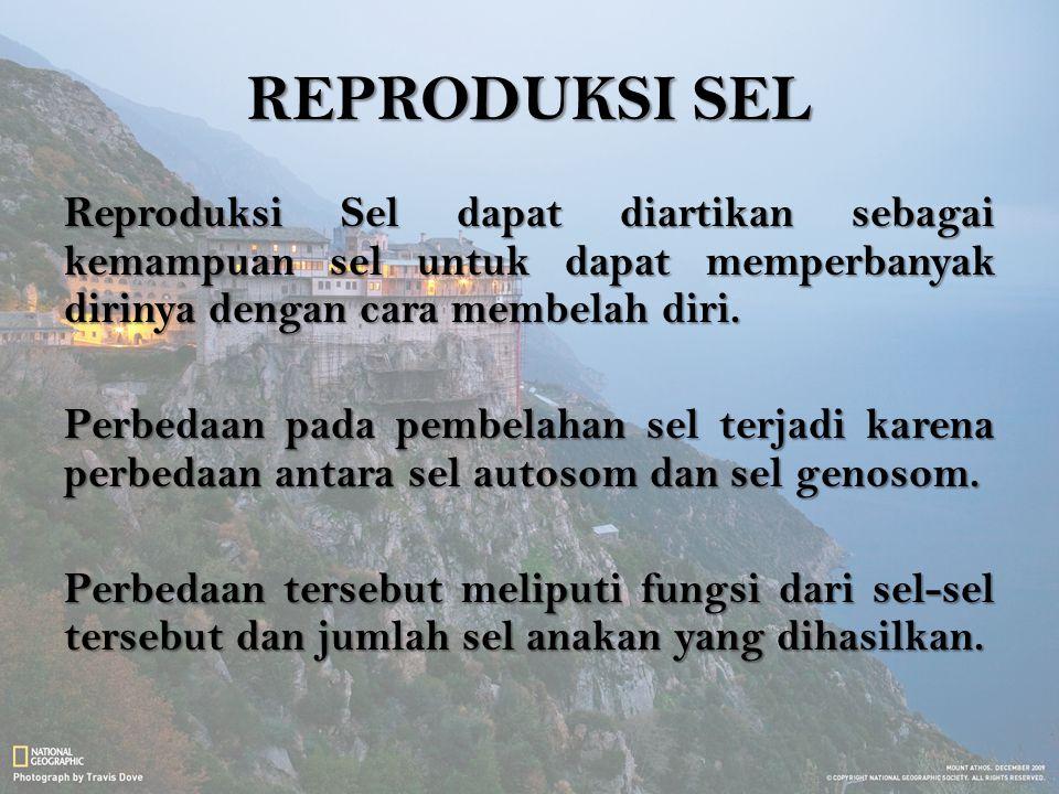 MEIOSIS Terjadi di Sel Kelamin (Gamet).