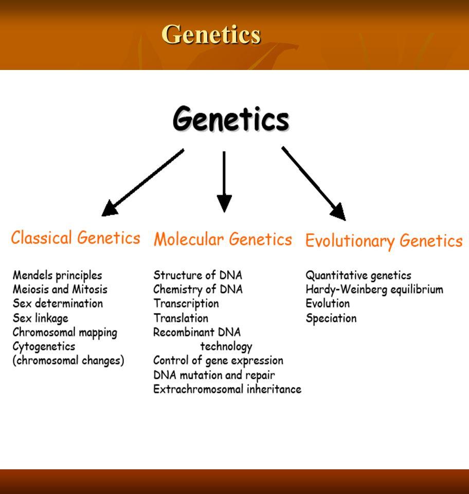 Mendelian Genetics (Genetika Mendel) PENEMUAN PRINSIP-PRINSIP GENETIKA  Gregor Mendel (Austria) (1822-1884),  penemu dasar ilmiah dari genetika.