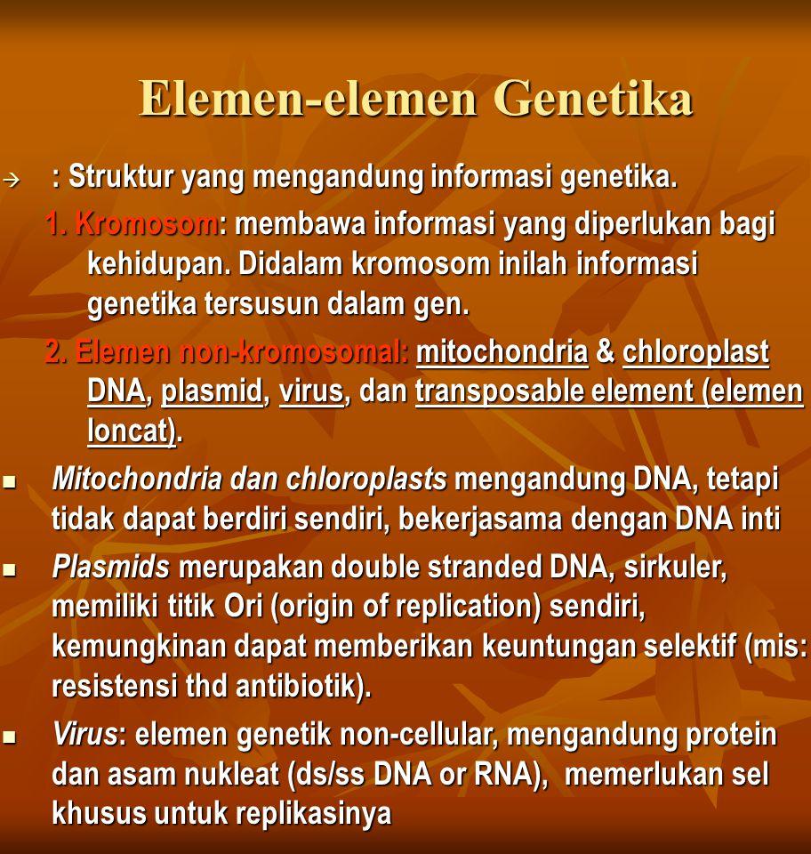 Materi genetik. DNA atau RNA.  Gen.