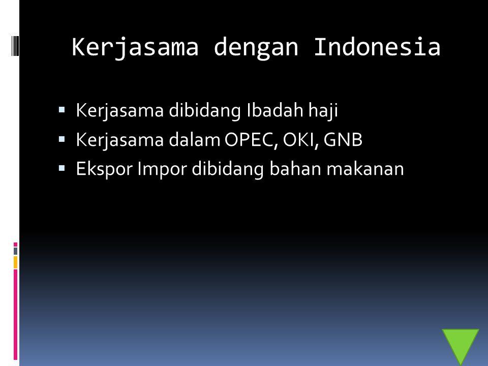 Kerjasama dengan Indonesia  Kerjasama dibidang Ibadah haji  Kerjasama dalam OPEC, OKI, GNB  Ekspor Impor dibidang bahan makanan