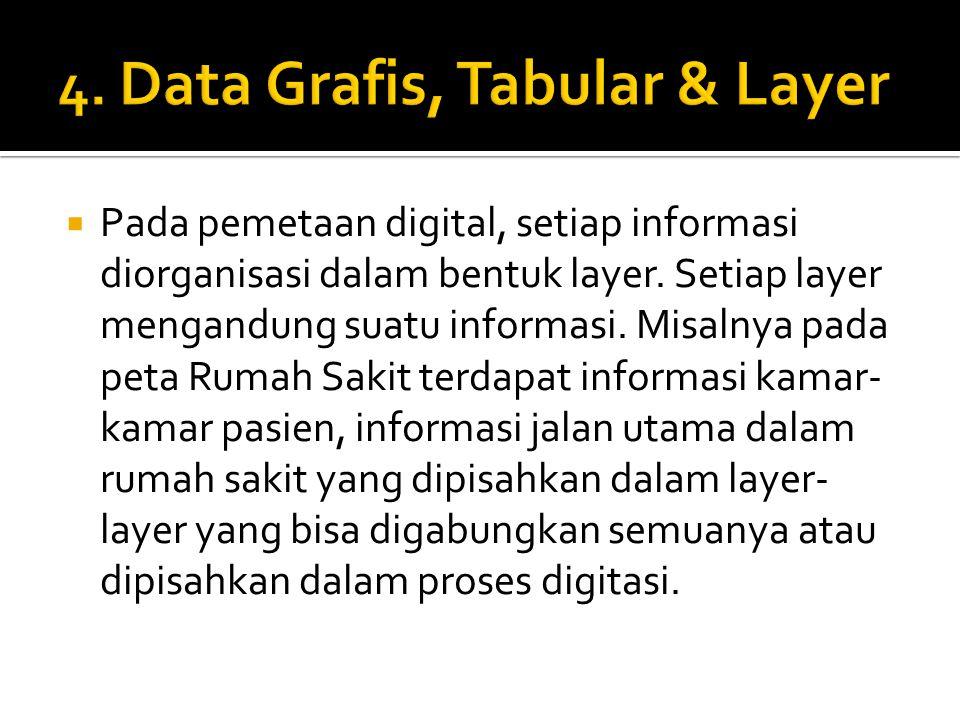  Pada pemetaan digital, setiap informasi diorganisasi dalam bentuk layer. Setiap layer mengandung suatu informasi. Misalnya pada peta Rumah Sakit ter