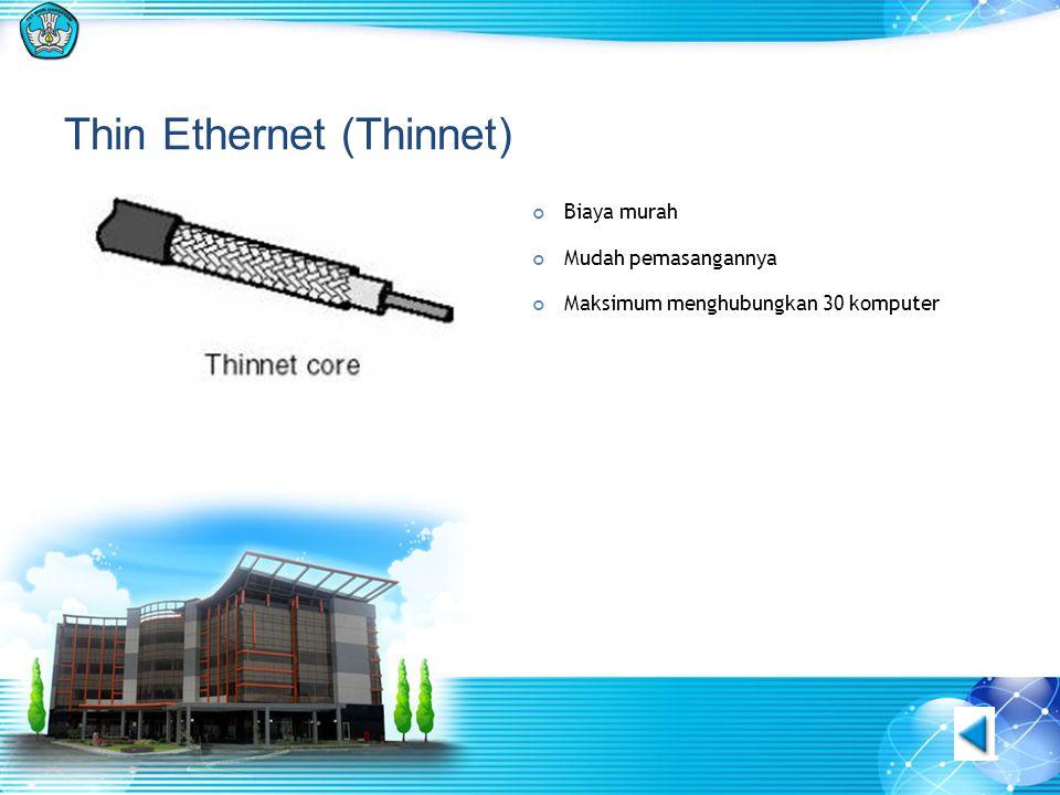 Thin Ethernet (Thinnet) Biaya murah Mudah pemasangannya Maksimum menghubungkan 30 komputer