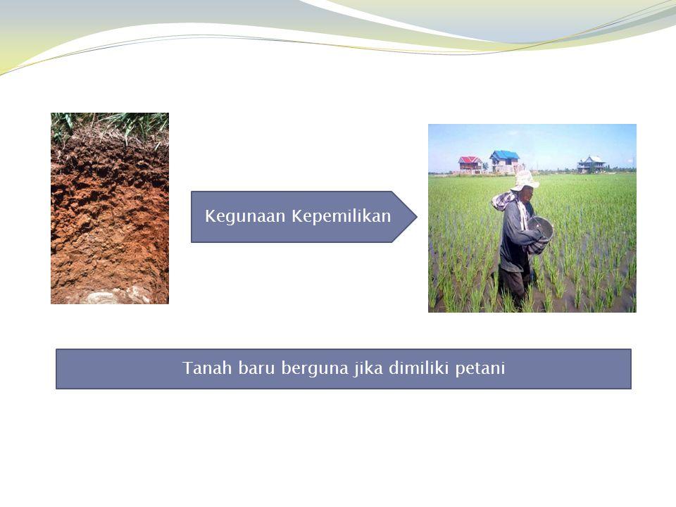 Kegunaan Kepemilikan Tanah baru berguna jika dimiliki petani