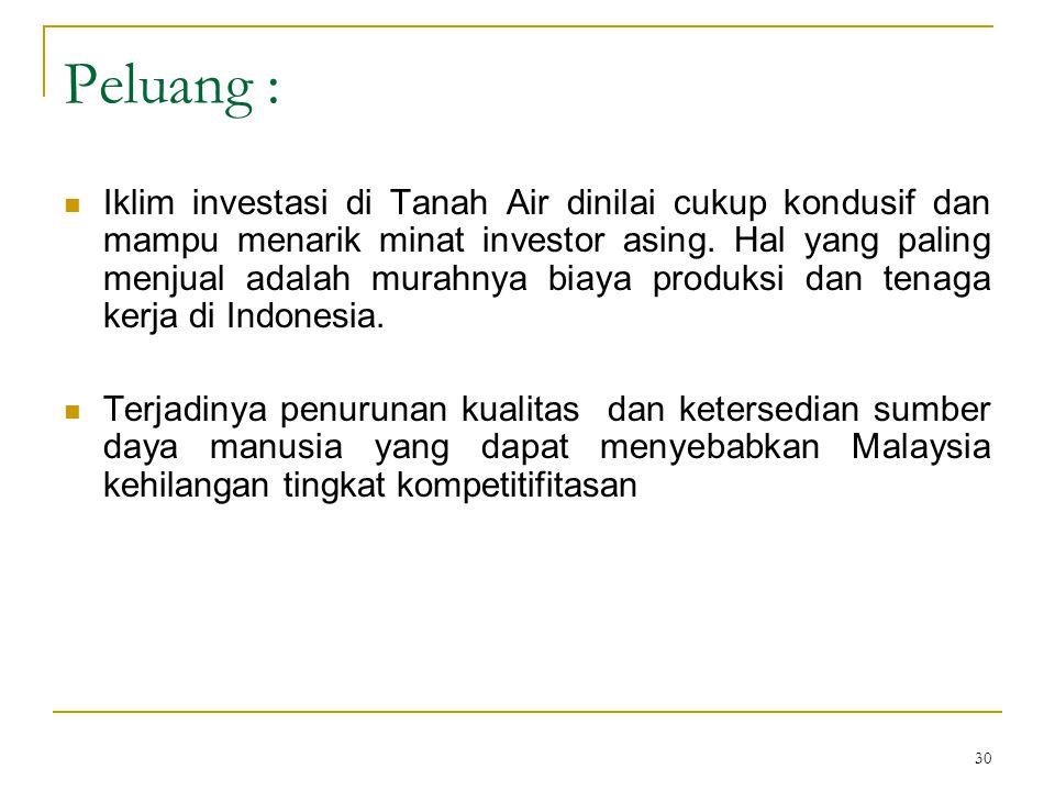 30 Peluang :  Iklim investasi di Tanah Air dinilai cukup kondusif dan mampu menarik minat investor asing.
