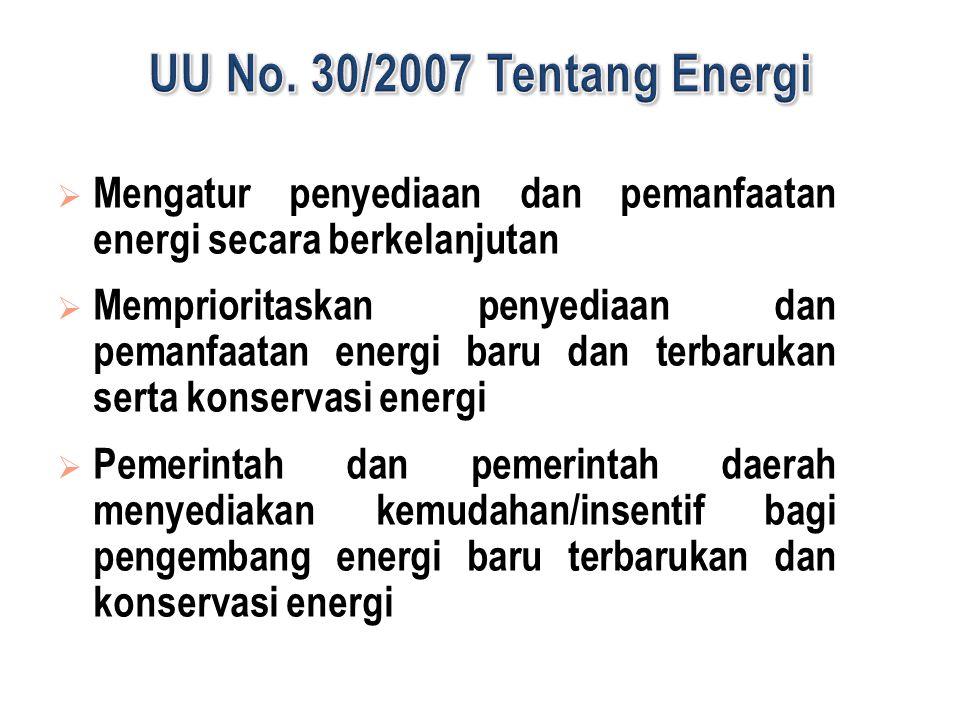  Mengatur penyediaan dan pemanfaatan energi secara berkelanjutan  Memprioritaskan penyediaan dan pemanfaatan energi baru dan terbarukan serta konservasi energi  Pemerintah dan pemerintah daerah menyediakan kemudahan/insentif bagi pengembang energi baru terbarukan dan konservasi energi
