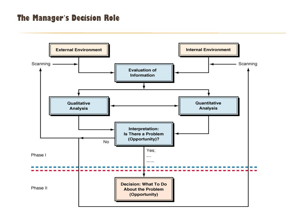 The Manager ' s Decision Role