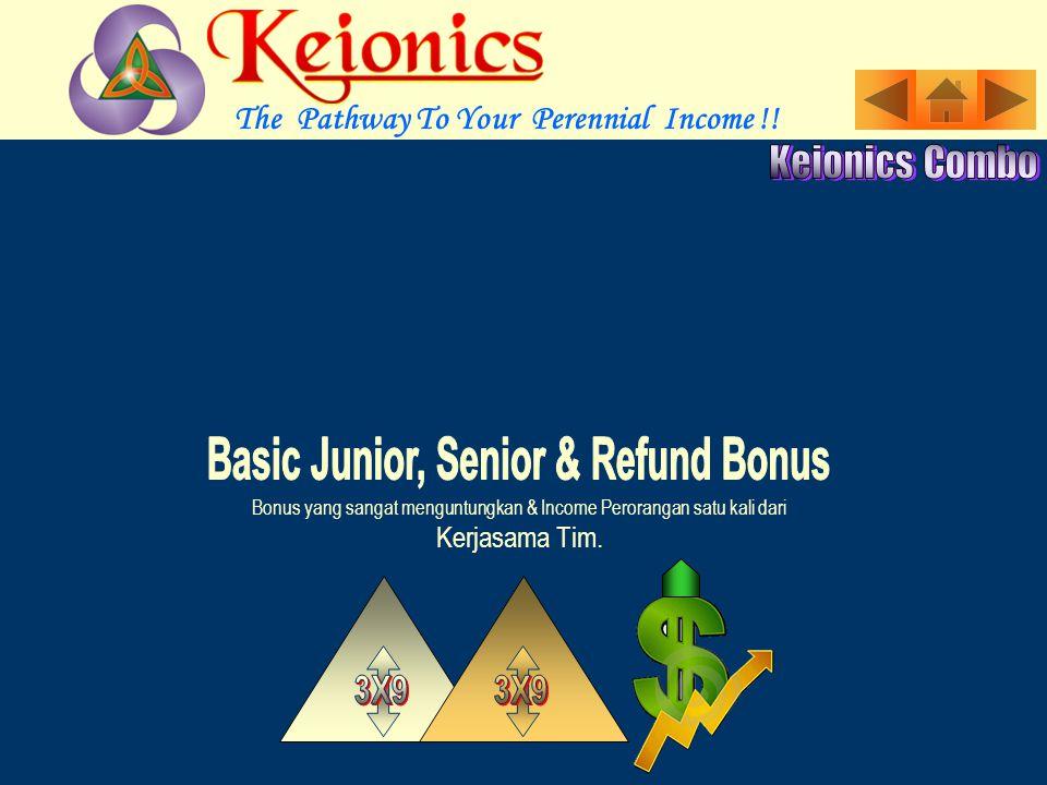 Bonus yang sangat menguntungkan & Income Perorangan satu kali dari Kerjasama Tim.