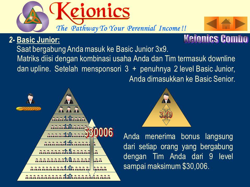 The Pathway To Your Perennial Income !.Saat bergabung Anda masuk ke Basic Junior 3x9.