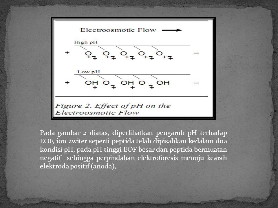 Pada gambar 2 diatas, diperlihatkan pengaruh pH terhadap EOF, ion zwiter seperti peptida telah dipisahkan kedalam dua kondisi pH, pada pH tinggi EOF b