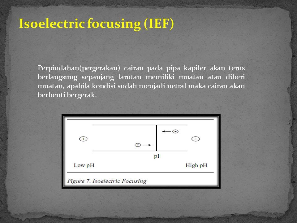 Isoelectric focusing (IEF) Perpindahan(pergerakan) cairan pada pipa kapiler akan terus berlangsung sepanjang larutan memiliki muatan atau diberi muatan, apabila kondisi sudah menjadi netral maka cairan akan berhenti bergerak.