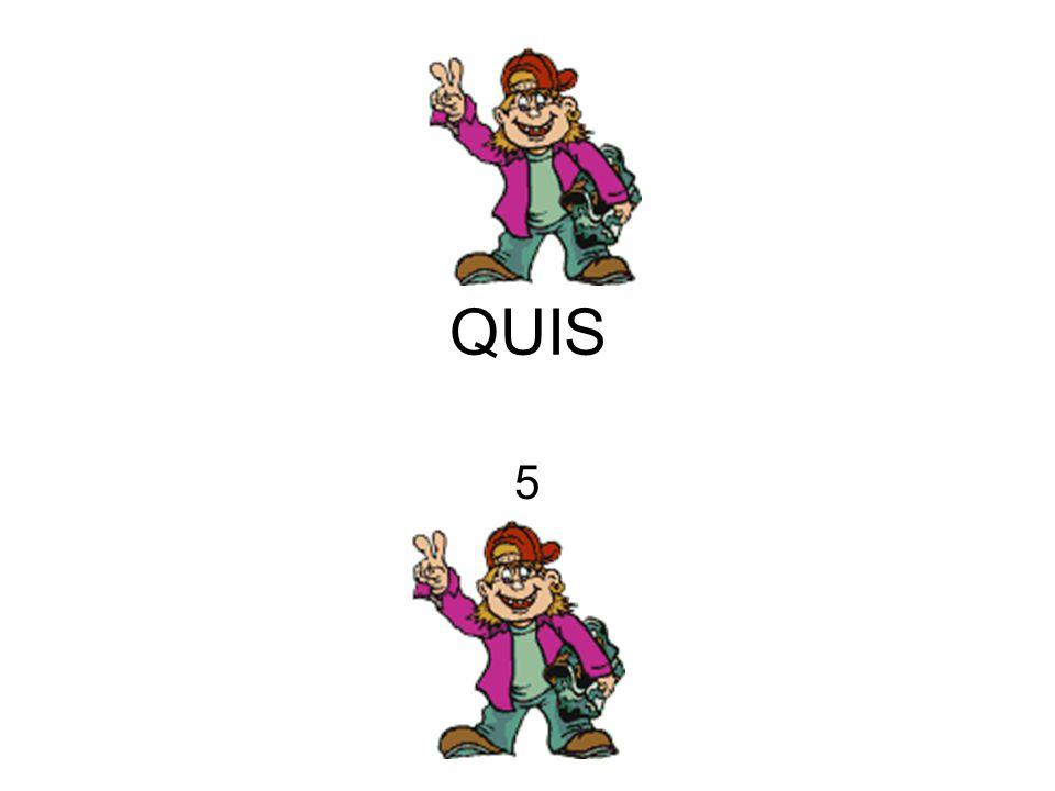QUIS 5