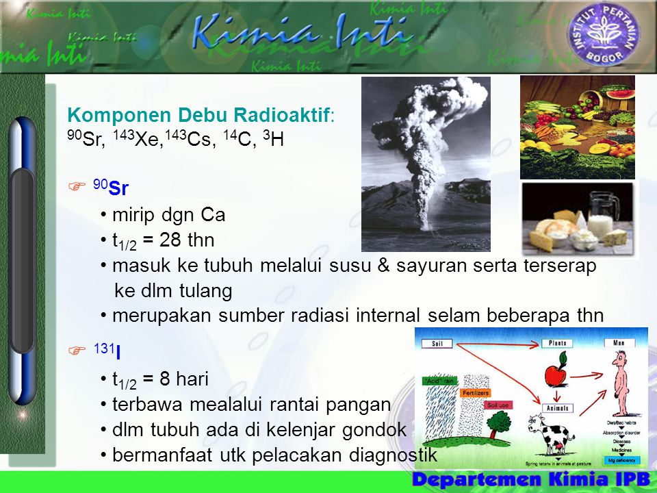Komponen Debu Radioaktif: 90 Sr, 143 Xe, 143 Cs, 14 C, 3 H  90 Sr • mirip dgn Ca • t 1/2 = 28 thn • masuk ke tubuh melalui susu & sayuran serta terserap ke dlm tulang • merupakan sumber radiasi internal selam beberapa thn  131 I • t 1/2 = 8 hari • terbawa mealalui rantai pangan • dlm tubuh ada di kelenjar gondok • bermanfaat utk pelacakan diagnostik