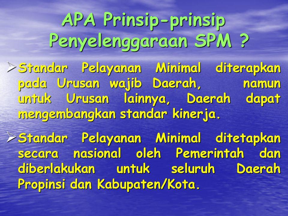 APA Prinsip-prinsip Penyelenggaraan SPM .