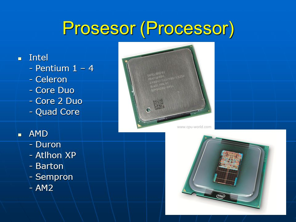 Prosesor (Processor)  Intel - Pentium 1 – 4 - Celeron - Core Duo - Core 2 Duo - Quad Core  AMD - Duron - Atlhon XP - Barton - Sempron - AM2