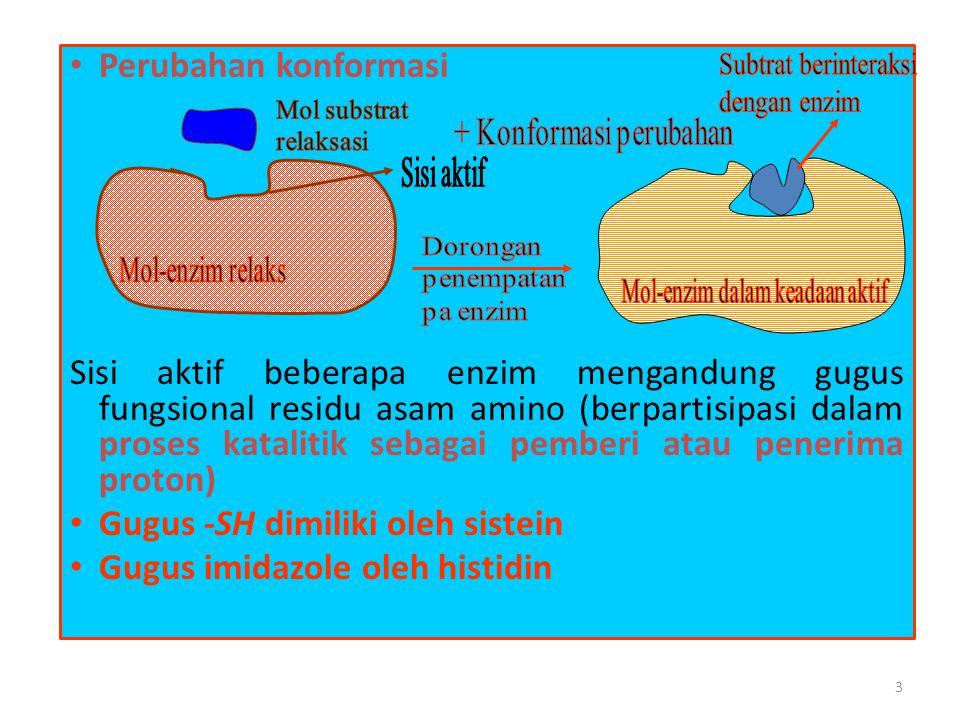 3 • Perubahan konformasi Sisi aktif beberapa enzim mengandung gugus fungsional residu asam amino (berpartisipasi dalam proses katalitik sebagai pember