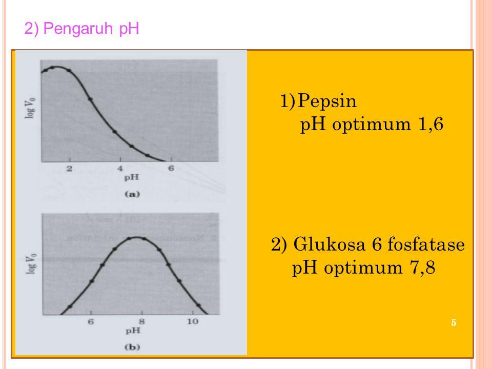 5 1)Pepsin pH optimum 1,6 2) Glukosa 6 fosfatase pH optimum 7,8 2) Pengaruh pH