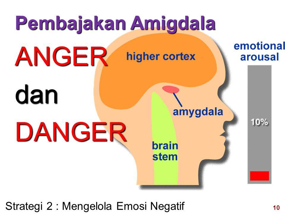 10 visit: www.exploreHR.org Pembajakan Amigdala ANGERdanDANGER Strategi 2 : Mengelola Emosi Negatif