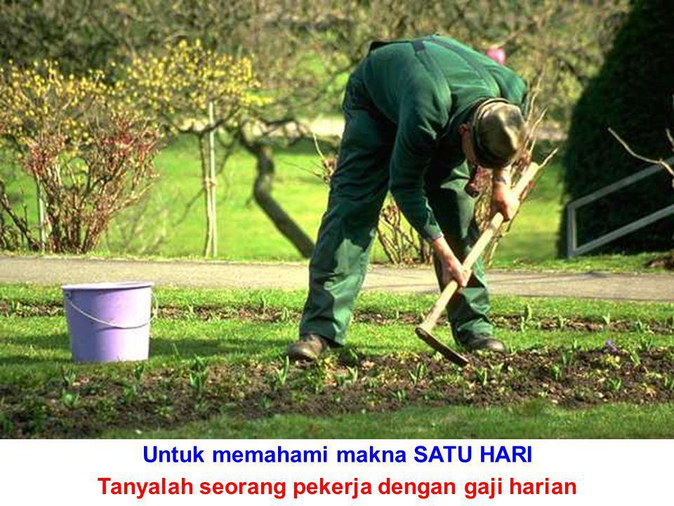 Untuk memahami makna SATU HARI Tanyalah seorang pekerja dengan gaji harian