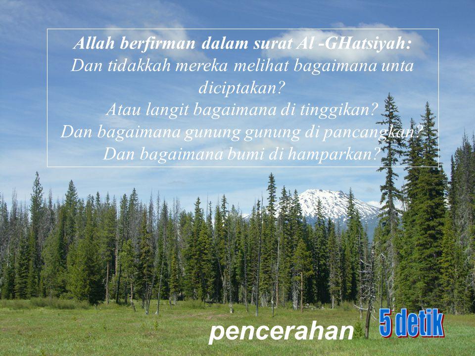 Allah berfirman dalam surat Al -GHatsiyah: Dan tidakkah mereka melihat bagaimana unta diciptakan? Atau langit bagaimana di tinggikan? Dan bagaimana gu
