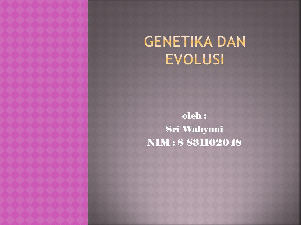  Evolusi molekuler meliputi: evolusi makromolekul dan 2) rekonstruksi sejarah evolusi gen dan organisme.