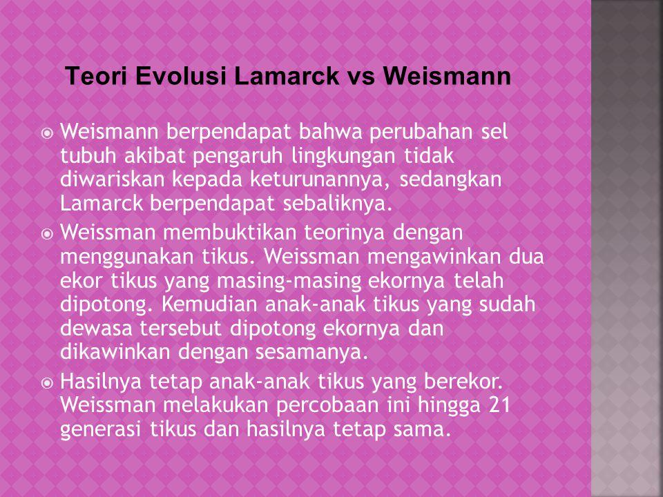 a.Evolusi pada leher Jerafah menurut Lamark: asal mula berleher pendek (Use and Diuse) b.Evolusi pada leher Jerafah menurut Darwin : nenek moyang bervariasi berleher panjang dan berleher pendek (Seleksi Alam)