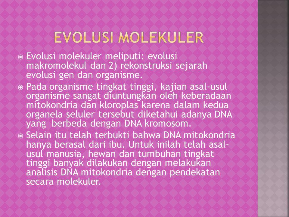  Pada populasi suatu organisme, beberapa sifat akan menjadi lebih umum, manakala yang lainnya akan menghilang.